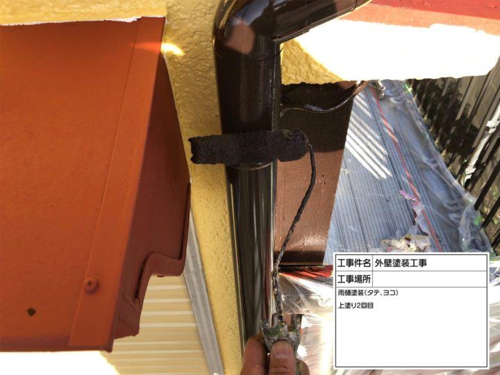 縦樋塗装③